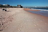 Florida Beach & Pier